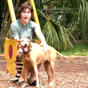 boy and dog at playground